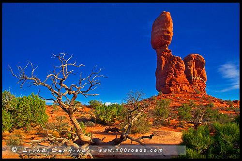 Балансирующий камень, Balanced Rock, Национальный парк Арки, Arches National Park, Юта, Utah, США, USA, Америка, America