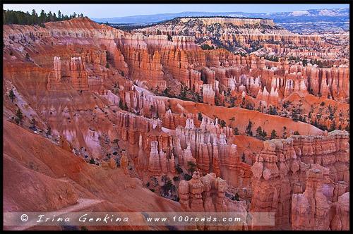 Закат, Каньон Брайс, Bryce Canyon, Юта, Utah, США, USA, Америка, America