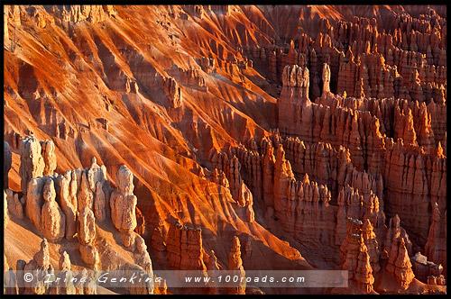 Рассвет, Амфитеатр Брайс, Bryce Amphitheater, Точки Вдохновения, Inspiration Point, Каньон Брайс, Bryce Canyon, Юта, Utah, США, USA, Америка, America