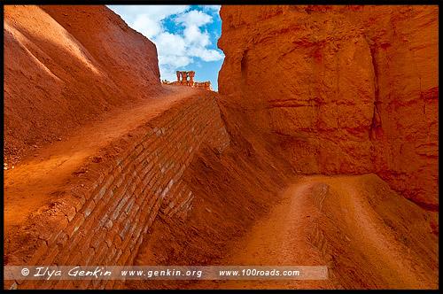 Рассвет, Амфитеатр Брайс, Bryce Amphitheater, Каньон Брайс, Bryce Canyon, Юта, Utah, США, USA, Америка, America