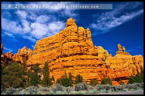 Худусы, hoodoos, Красный Каньон, Red Canyon, Юта, Utah, США, USA, Америка, America
