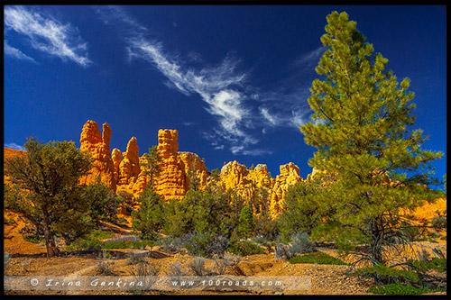 Склоны, Красный Каньон, Red Canyon, Юта, Utah, США, USA, Америка, America