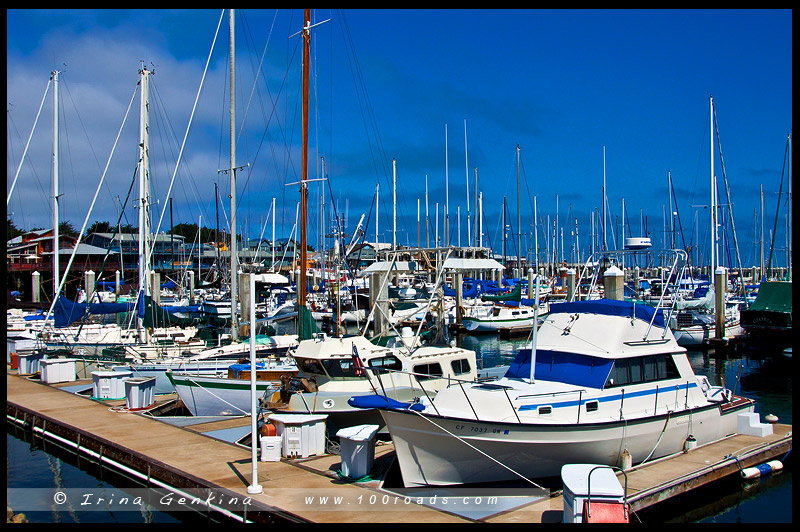 Монтерей, Monterey, Калифорния, California, США, USA, Америка, America