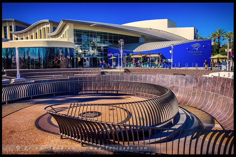 Тихоокеанский Аквариум, Aquarium of the Pacific, Лонг Бич, Long Beach, Лос Анжелес, LA, Los Angeles, Калифорния, California, США, USA