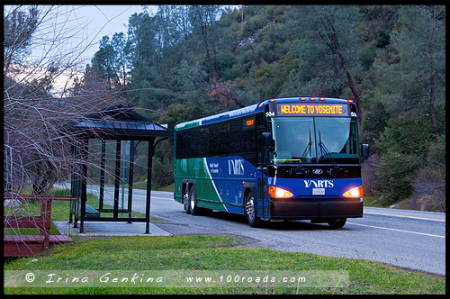 Остановка, Bus stop, YARTS, Yosemite View Lodge, Национальный парк Йосемити, Yosemite National Park, Калифорния, California, СЩА, USA, Америка, America