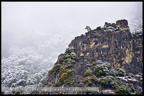 Вид от плошадки Cathedral Rocks, El Capitan, Национальный парк Йосемити, Yosemite National Park, Калифорния, California, СЩА, USA, Америка, America