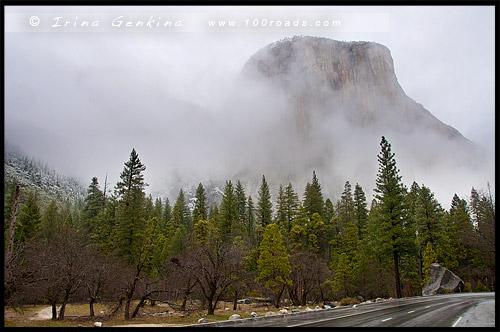 Вид от плошадки Cathedral Rocks, Bridalveil Fall, Национальный парк Йосемити, Yosemite National Park, Калифорния, California, СЩА, USA, Америка, America