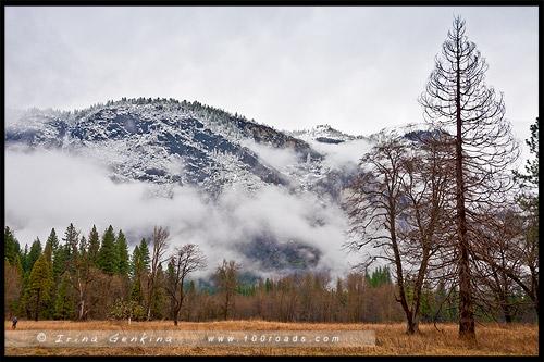 Национальный парк Йосемити, Yosemite National Park, Калифорния, California, СЩА, USA, Америка, America